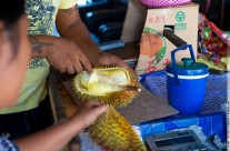 ������ (DURIAN)